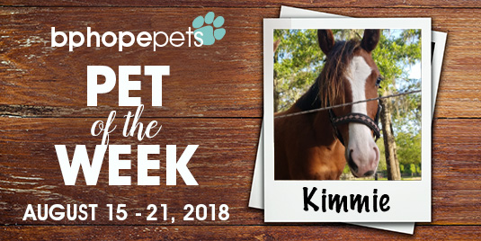 Pet of the Week: Kimmie